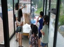 [봉화]분천역 한여름 산타마을 성황리에 마무리